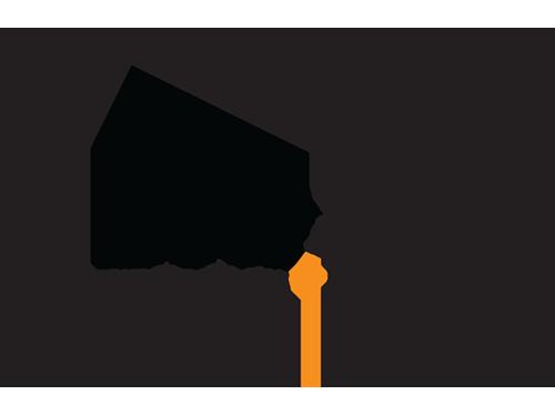 dns_logo_marge